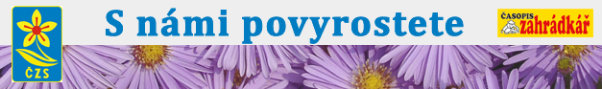 Popis: logo czs povyrostete